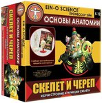 Human biology. Box kit (Профессор Эйн)