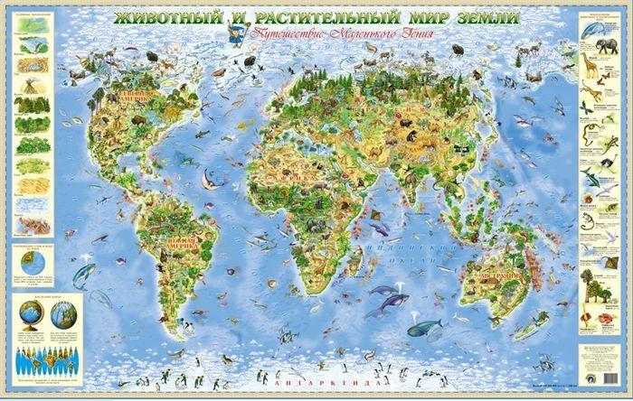 Животный и растительный мир Земли. Географическая карта для детей ...