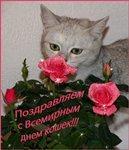 Праздник котов и кошек