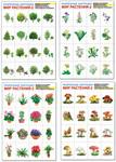 Мир растений -2. Комплект дидактических карточек