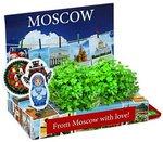 Москва (фото). Живая открытка. Оригинальный сувенир