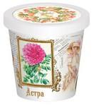 Астра. Набор для выращивания цветов в домашних условиях